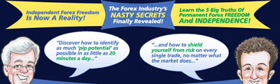 forex nitty gritty image